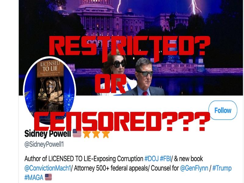 Twitter Censoring Gen. Flynn Lawyer Sidney Powell