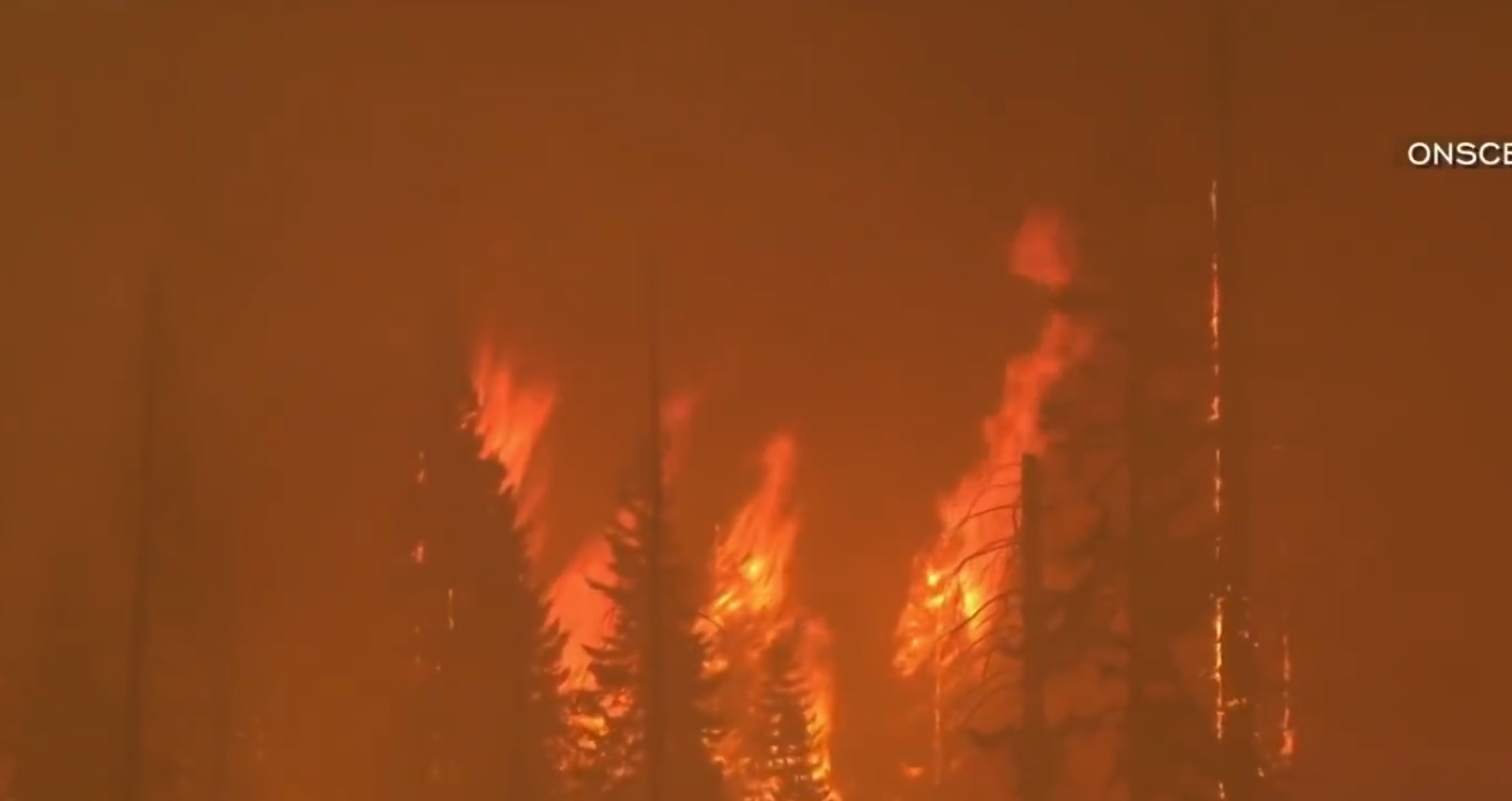Fact Checkers And FBI Say No Arson Involvement In Western State Fires But…