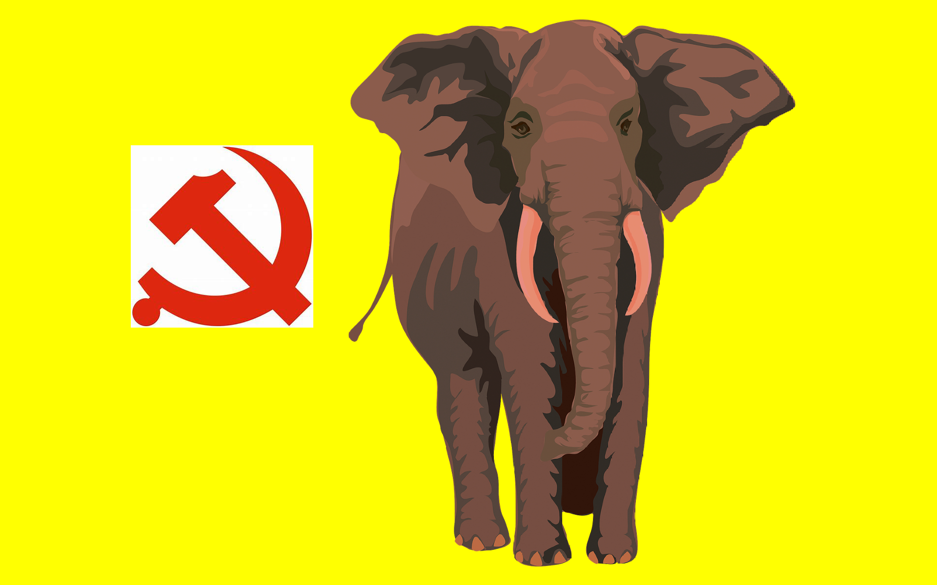 The Elephant In The Room – The Chinese Communist Party